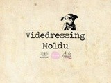 Videdressing Moldu